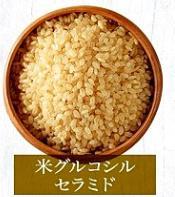 米葡萄糖腦苷脂的圖片