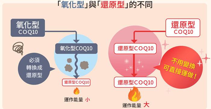 氧化型和還原型的不同