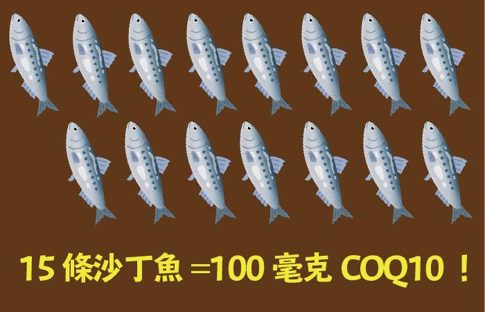 15條沙丁魚