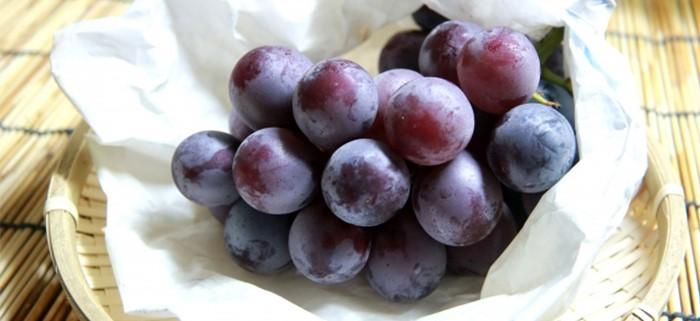 阿雷可雅的葡萄口味