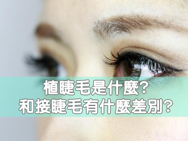 植睫毛是什麼?好處和後遺症是?和接睫毛有什麼差別?