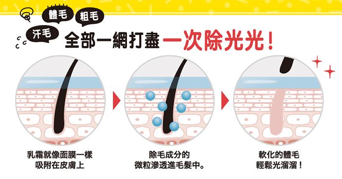 氫硫乙酸鈣除毛示意圖