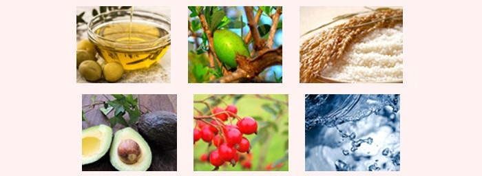 VALANROSE玫瑰錠的6種營養成分